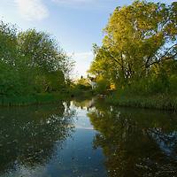 Idyllic pond, Kent, England