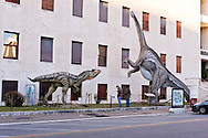 """Roma 30 Dicembre 2014<br /> """"Dinosauri in Carne e Ossa"""", mostra di dinosauri e altri animali preistorici estinti, a grandezza naturale, allestita dall' Associazione paleontologica ambientale, all'Università La Sapienza di Roma. La mostra sara aperta fino al 31 Maggio 2015. La scultura di un Allosaurus fragilis e di un Diplodocus longus<br /> Rome December 30, 2014<br /> """"Dinosaurs in Flesh and Bones"""", an exhibition of dinosaurs and other prehistoric animals extinct, to life-sized, prepared by Association paleontological environmental, a La Sapienza University of Rome. The exhibition will be open until May 31, 2015. The sculpture of Allosaurus fragilis and Diplodocus longus."""