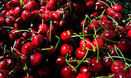 A pile of Cherries <br />
