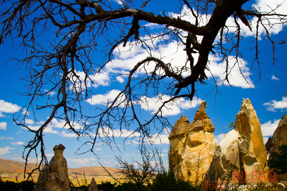 Fairy chimneys. Pasa Bagi. Cappadocia, Turkey.