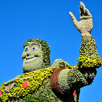Buzz Lightyear Topiary at Epcot in Orlando, Florida<br /> Everyone remembers Neil Armstrong as the first man to walk on the moon in 1969. His co-pilot on Apollo 11was Buzz Aldrin. His achievement of being the second person to take a lunar stroll was honored when Pixar Animation Studios named this toy space ranger Buzz Lightyear.  His first appearance with Woody was in the 1995 release of Toy Story. You can almost hear this topiary in Future World East shout in Tim Allen&rsquo;s voice, &ldquo;To infinity and beyond.&rdquo;