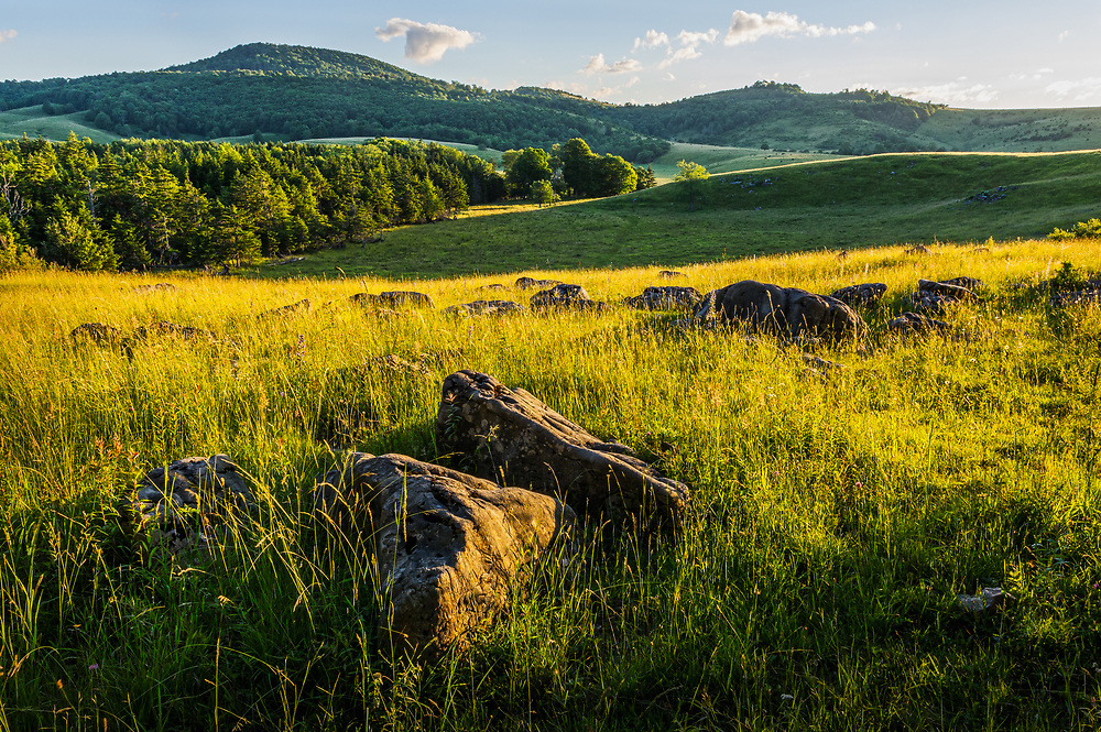 The sun light bathes the country side landscape defining the distant rolling hills and adding texture to the limestone boulders strewn across the tall, soft fields of grass in Randolph County, West Virginia.