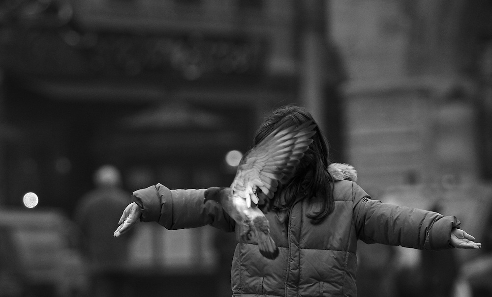 Wings. Girl and a dove at Piazza Maggiore  in Bologna Italy. Limited Edition 1 of 10