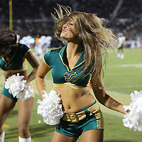 A USF Bulls cheerleader is seen on the sidelines during an NCAA football game between the South Florida Bulls and the 17th ranked University of Central Florida Knights at Bright House Networks Stadium on Friday, November 29, 2013 in Orlando, Florida. (AP Photo/Alex Menendez)
