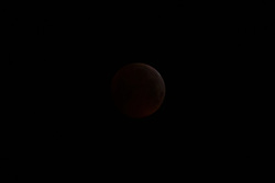 "The earth's shadow almost obliterates the full moon, leaving it glowing a faint, dull red as a lunar eclipse ""Blood Moon"" is seen from Blackheath in South East London. LONDON, January 21 2019."