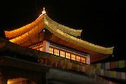 India, Ladakh region state of Jammu and Kashmir, Pagoda shaped Leh monastery at night long exposure