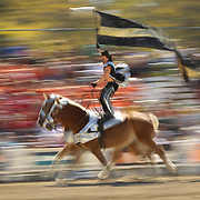 Erik Martonovich rode his Belgian's past the filled bleachers during his Roman riding perfomance in the Equine Village Arena during the Alltech FEI World Equestrian Games at the Kentucky Horse Park  on Thursday, October 7, 2010. Photo by David Stephenson
