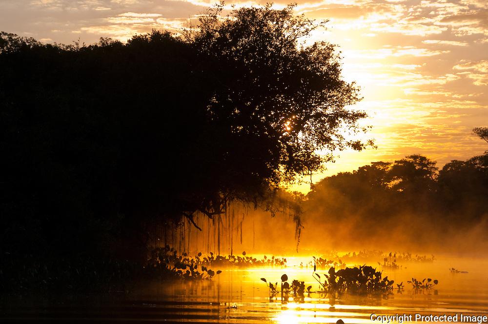 Sunrise on the Cuiba river