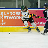2nd year forward Sarah Hornoi (19) of the Regina Cougars in action during the Women's Hockey home game on October 13 at Co-operators arena. Credit: Arthur Ward/Arthur Images