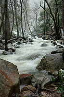 One branch of Bridal Veil creek, the runoff from Bridal Veil Fall.