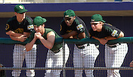 Baylor players put on the rally caps in the ninth inning against Kansas State.  K-State defeated the Baylor Bears 3-1 at Tointon Stadium in Manhattan, Kansas, May 20, 2006.