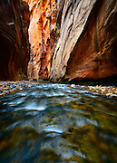 The Wall Street section of the Virgin River Narrows, Zion National Park in Utah.
