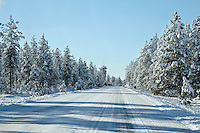 A snowy backwoods highway through a winter wonderland.