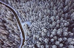 THEMENBILD - Verkehr auf einer Strasse durch einen winterlichen Wald, aufgenommen am 18. Januar 2019 in Zakopane, Polen // Verkehr auf einer Strasse durch den winterlichen Wald, Zakopane, Poland on 2019/01/18. EXPA Pictures © 2019, PhotoCredit: EXPA/ JFK