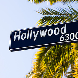 Picture of a Hollywood street sign with palm trees in the Hollywood district of Los Angeles in Southern California. Photo is vertical, high resolution and was taken in 2012.
