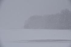 Lake Nockamixon Winter Whiteout
