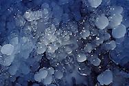 DEU, Germany, Bergisches Land region, ice over grass at the Broelstream valley....DEU, Deutschland, Bergisches Land, vereiste Graeser im Broelbachtal, .. ......