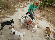 Puppies enthusiastically greet Terryl Just as she enters the Puppy Enclosure of the shelter.
