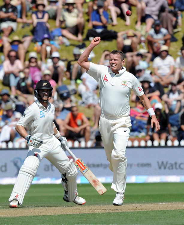 Australia's Peter Siddle reacts after bowling in front of New Zealand's Kane Williamson on the third day of the first International Cricket Test match at Basin Reserve, Wellington, New Zealand, Sunday, February 14, 2016. Credit:SNPA / Ross Setford