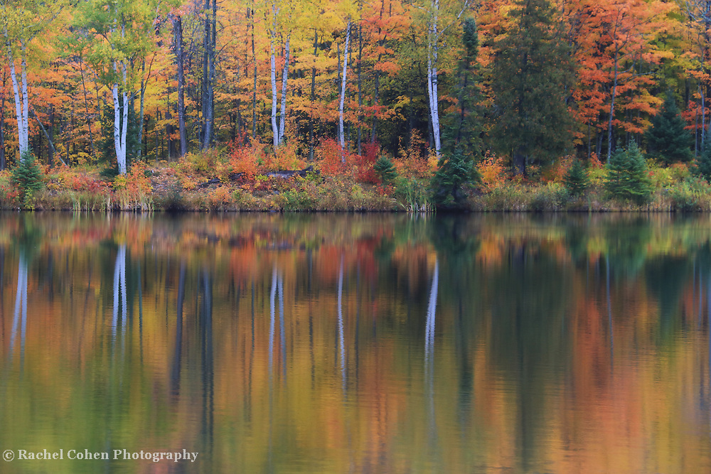 &quot;Lake Plumbago in Reflection&quot;<br />