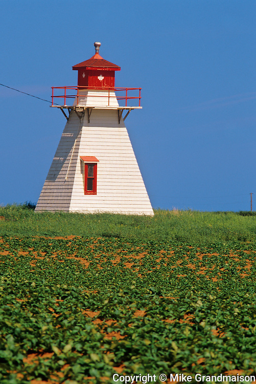 Lighthouse and potatoes