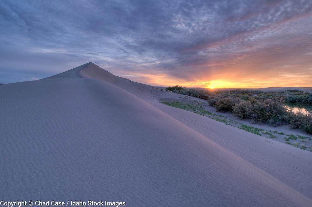 Idaho. Bruneau Dunes State Park near Mountain Home.