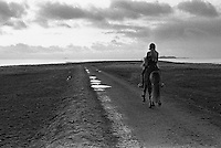 Ei jente rir i kveldssola p&aring; Kvalneset p&aring; Giske.<br /> Foto: Svein Ove Ekornesv&aring;g