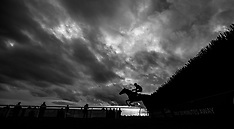 The Betway Kingwell Hurdle Day - Wincanton Racecourse - 17 February 2018