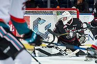 KELOWNA, CANADA - NOVEMBER 11: Riley Lamb #33 of the Red Deer Rebels misses a save against the Kelowna Rockets on November 11, 2017 at Prospera Place in Kelowna, British Columbia, Canada.  (Photo by Marissa Baecker/Shoot the Breeze)  *** Local Caption ***