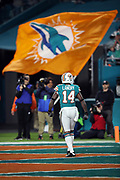 Miami Dolphins wide receiver Jarvis Landry (14) enjoys the moment as he runs off the field to a waving Dolphins flag after catching a 4 yard touchdown pass for a 27-10 third quarter Dolphins lead during the 2017 NFL week 14 regular season football game against the New England Patriots, Monday, Dec. 11, 2017 in Miami Gardens, Fla. The Dolphins won the game 27-20. (©Paul Anthony Spinelli)