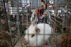 Pavilhão de Pequenos Animais na 38ª Expointer, que ocorre entre 29 de agosto e 06 de setembro de 2015 no Parque de Exposições Assis Brasil, em Esteio. FOTO: Pedro H. Tesch/ Agência Preview