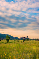 Amid a field of wildflowers, Garden of the Gods sticks out in the distant landscape, surrounded by mountain and clouds, Colorado Springs, Colorado.
