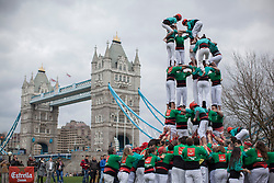 © licensed to London News Pictures. London, UK 19/04/2013. 170 members of the Castellers de Vilafranca team forming a human tower by climbing on top of each other in Potters Fields, London. A unique Catalan custom, the Human Towers have been constructed during town celebrations and festivals in Barcelona for three hundred years and are described by UNESCO as an 'Intangible Cultural Heritage of Humanity'. Photo credit: Tolga Akmen/LNP