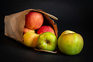 Variety of red, yellow and green apples falling out of brown paper bag on black background.
