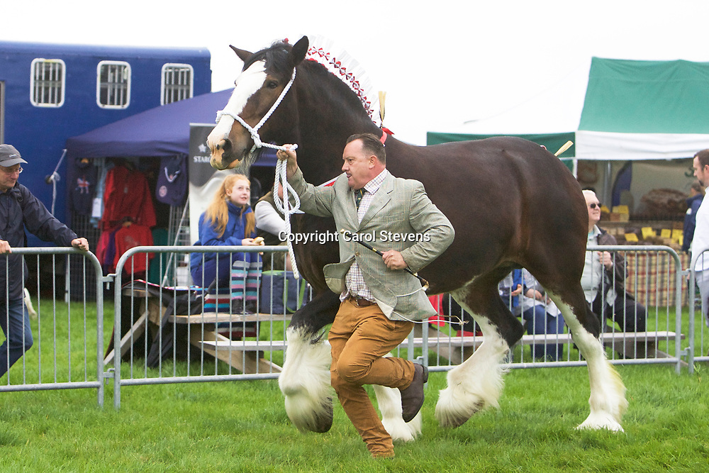 Martin Fountain and WOODHOUSE CALENDAR GIRL<br />