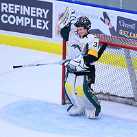 2nd year goalie Jane Kish (31) of the Regina Cougars all smiles during the Women's Hockey Home Game on November 26 at Co-operators arena. Credit: Arthur Ward/Arthur Images