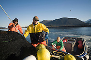 Commercial fishermen (left to right: Eric Briese, Matt Springer and Doug Groenveld) finish bringing the seine onboard during the 2007 Sitka Herring Sac Roe fishery.