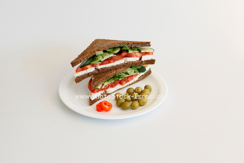 Hard white goat milk cheese sandwich on white background