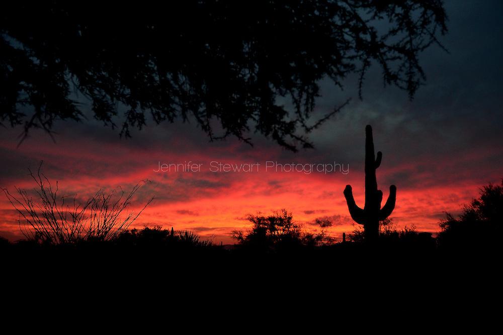 SCOTTSDALE, AZ - OCT 25: Silhouette of the desert skyline as the sun sets. (Photo by Jennifer Stewart)