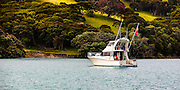 Launch, La Chica, at anchor in Te Kouma Harbour, Coromandel Peninsula, New Zealand.