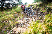 Scottish Enduro Series, Ae Forest, Round 6, 2016