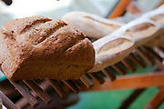 A loaf of bread and two baguettes on a cooling rack in Bottletree Bakery, Oxford Mississippi.
