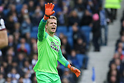 Huddersfield Town goalkeeper Jonas Lossl (1) gestures during the Premier League match between Brighton and Hove Albion and Huddersfield Town at the American Express Community Stadium, Brighton and Hove, England on 2 March 2019.