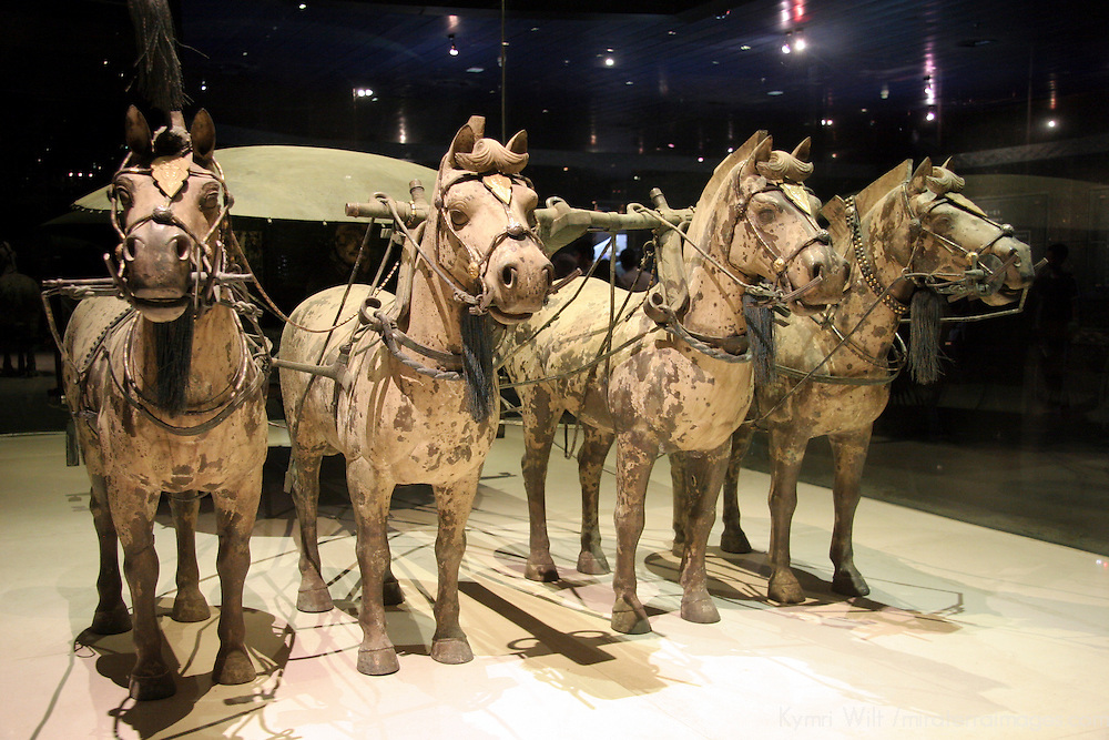 Asia, China, Shaanxi, Xian. Terra Cotta warriors horses and carriage.