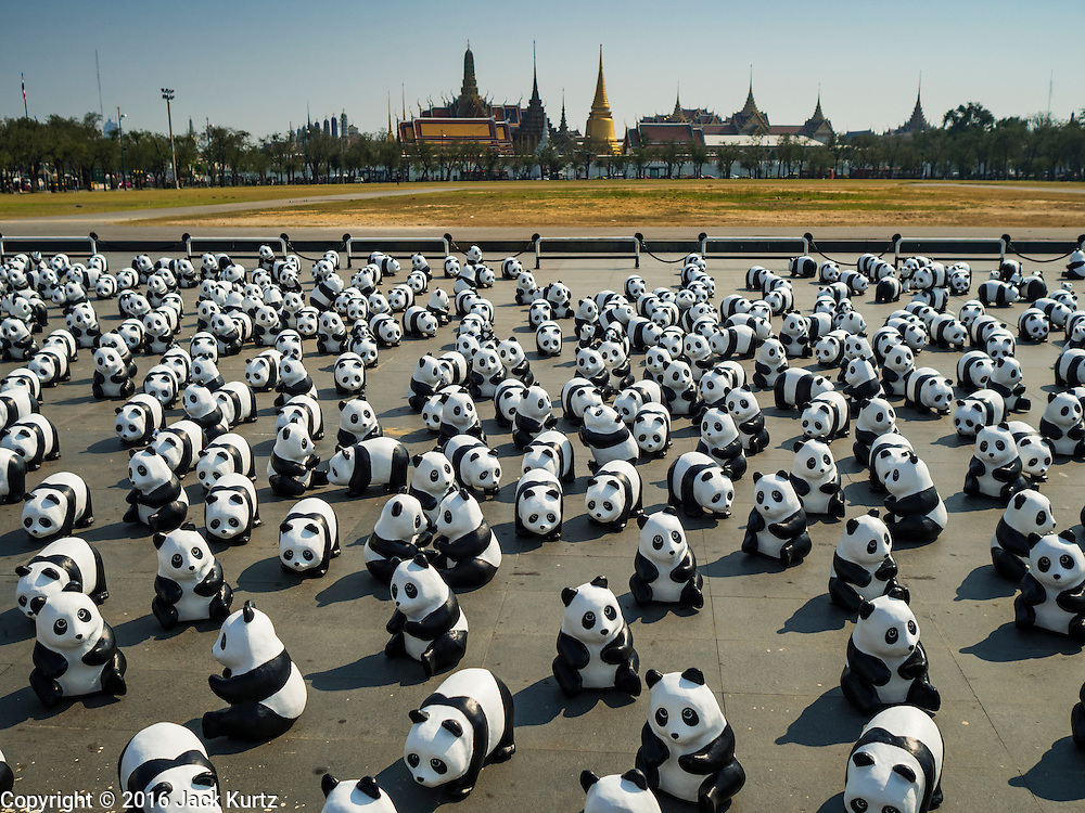 "04 MARCH 2016 - BANGKOK, THAILAND: The Grand Palace in the background behind the ""1600 Pandas+ World Tour in Thailand: For the World We Live In and the Ones We Love"" exhibit on Sanam Luang in Bangkok. The 1600 paper maché pandas, an art installation by French artist Paulo Grangeon will travel across Bangkok and parts of central Thailand for the next week and then will be displayed at Central Embassy, a Bangkok shopping mall, until April 10. The display of pandas in Thailand is benefitting World Wide Fund for Nature - Thailand and is sponsored by Central Embassy with assistance from the Tourism Authority of Thailand and Bangkok Metropolitan Administration and curated by AllRightsReserved Ltd.     PHOTO BY JACK KURTZ"