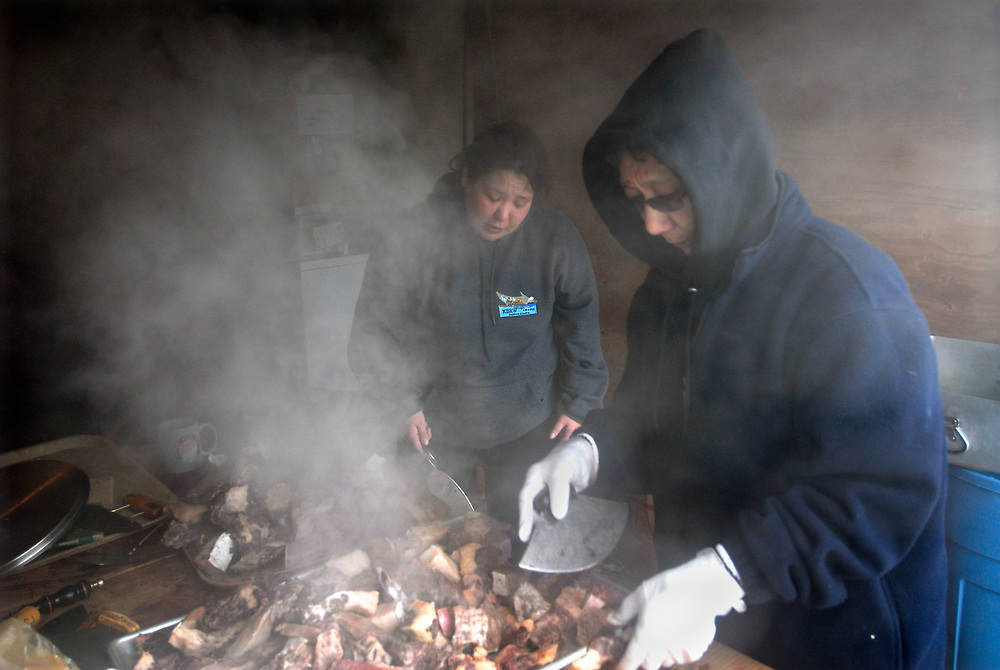 Alaska, Barrow. Women from Hopson 3 crew cook the whale meat to be served on the feast at the captains' house. The crew harvested a 28 feet whale during 2007 Spring.