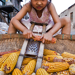 Girl taking the grain out of the corncobs in the street. Pingyao, Shanxi, China.