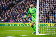 Mathew Ryan (GK) (Brighton) during the Premier League match between Brighton and Hove Albion and Everton at the American Express Community Stadium, Brighton and Hove, England on 26 October 2019.