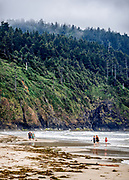 View of the north side of Cape Lookout from Cape Lookout State Park Campground near Netarts, Oregon.