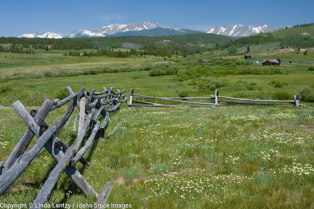 Montana, Anaconda. Primitive Log fence through a field of Montana wildflowers. The historic Mule Ranch in the distance. Pintlar scenic route.